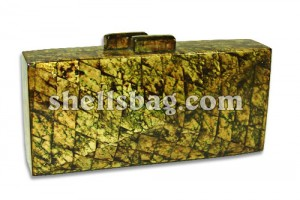 Capiz Shells Handbag